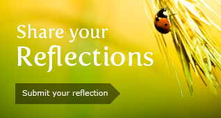 Share your Reflections